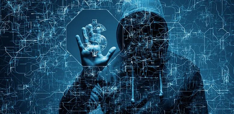 DeCoopEnHaegenLezingCybercrime