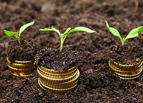 Financiële planning: onmisbaar binnen slim ondernemerschap